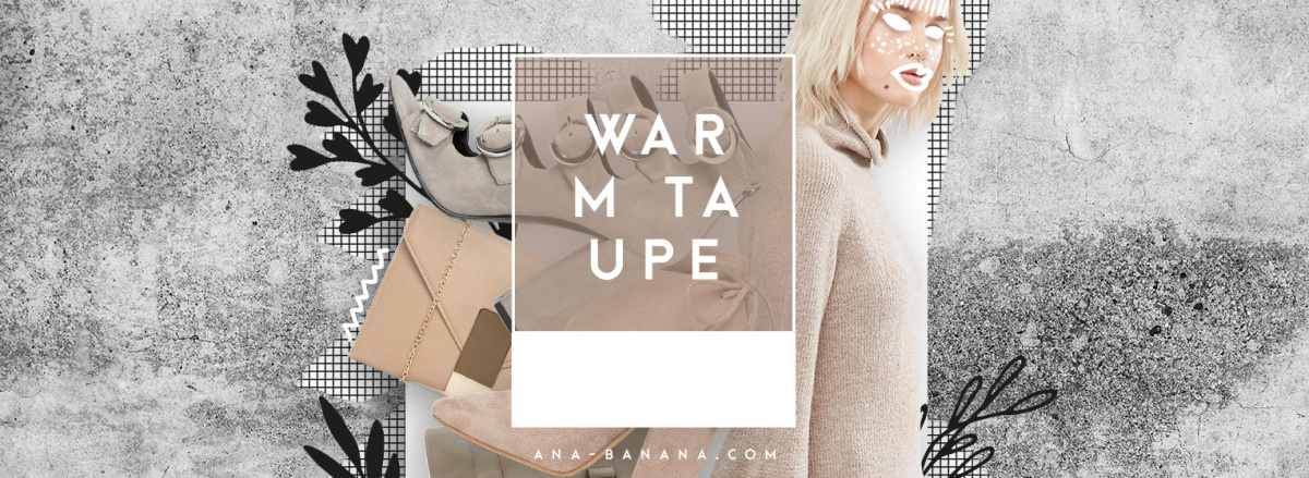 TREND: Pantone 2016 / 2017 Warm Taupe
